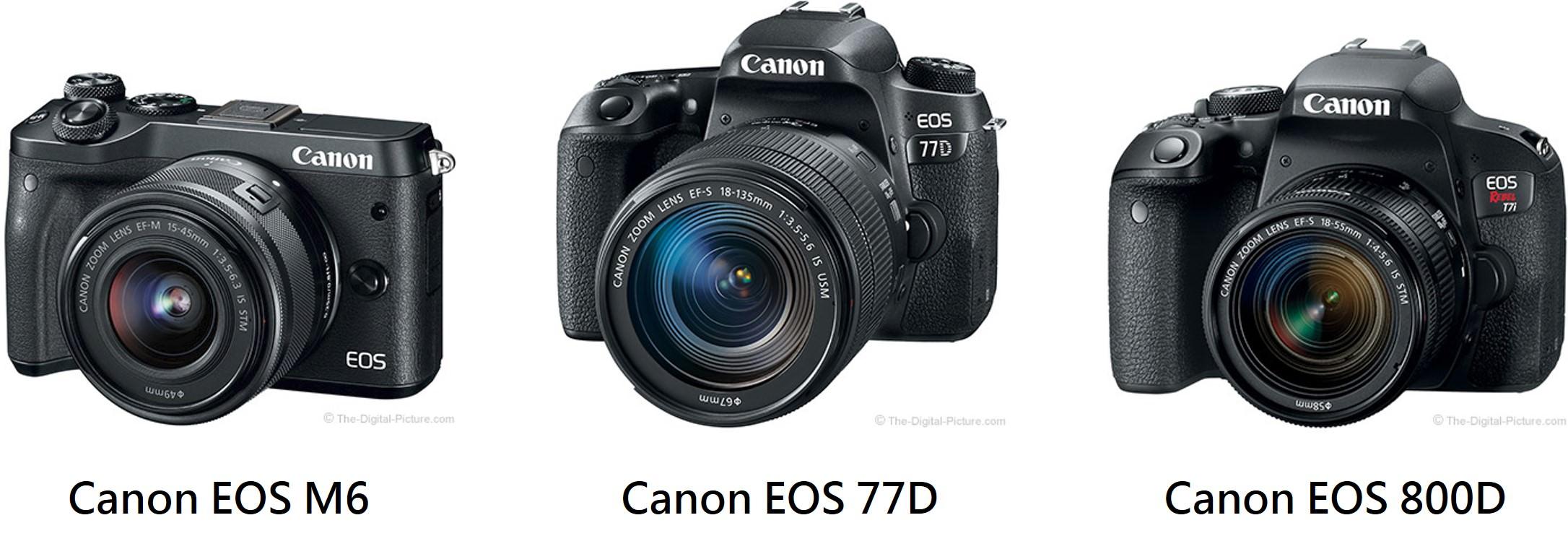 Canon 77D 800D 規格比較