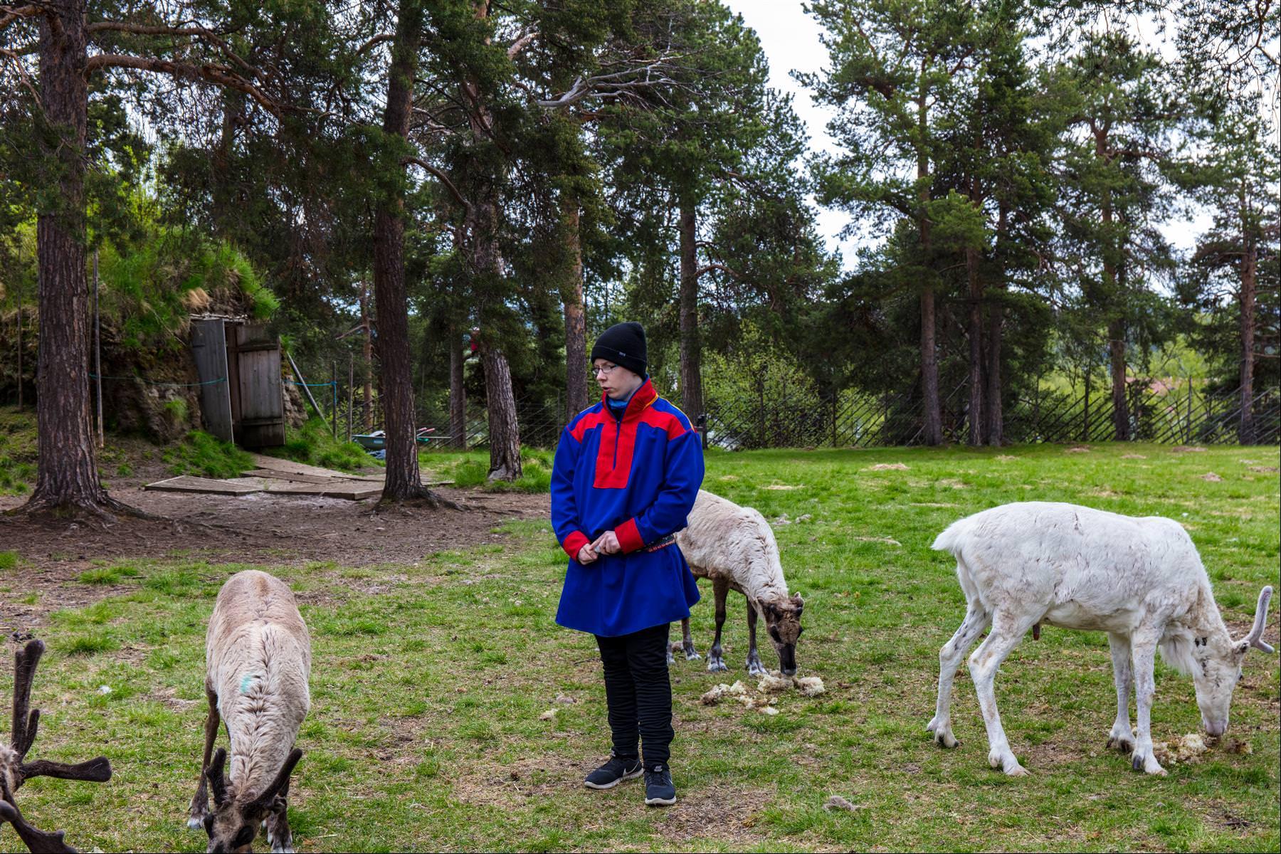 薩米文化村