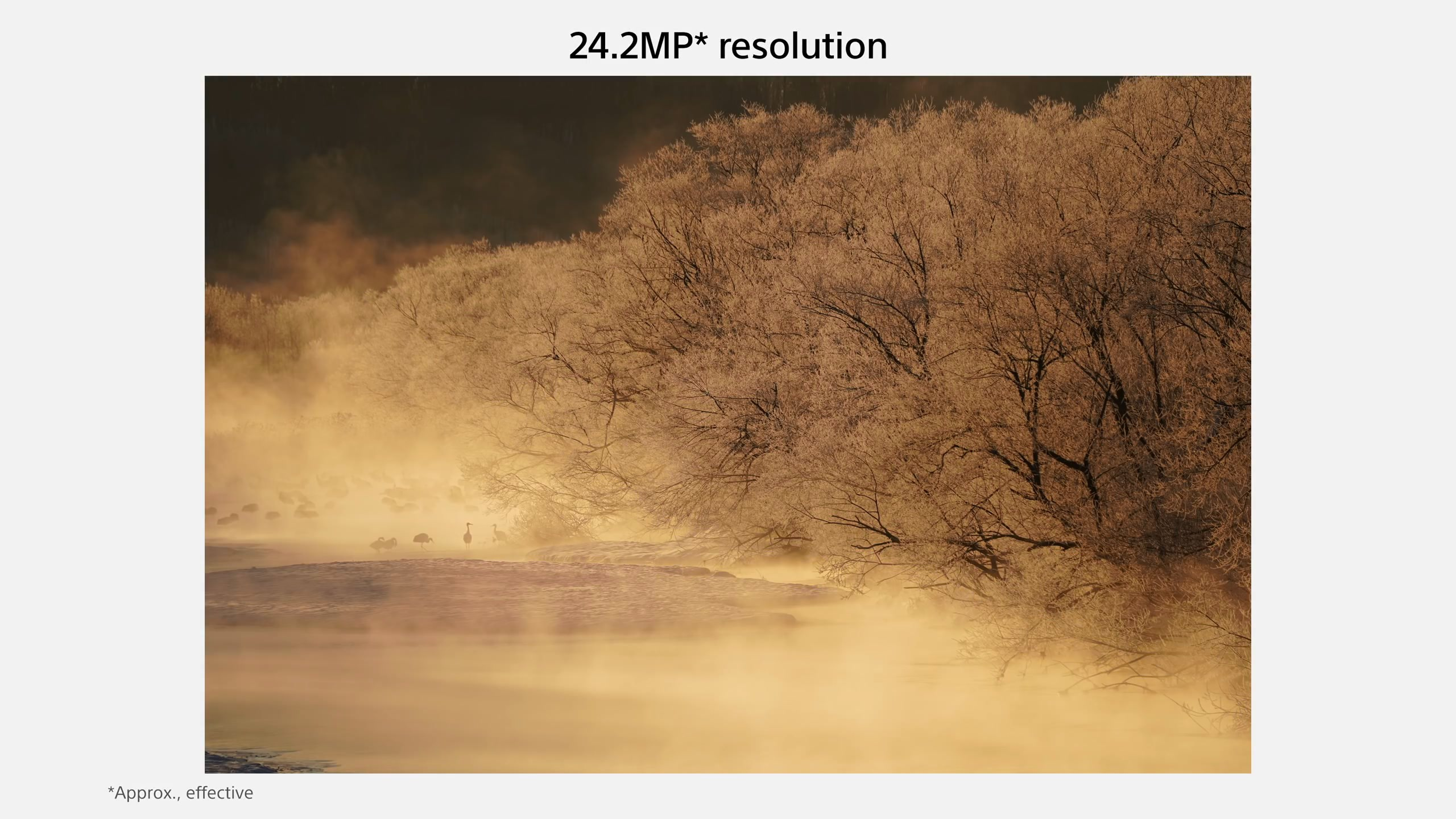 Sony A7III A73 規格特色